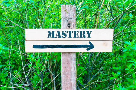 mastery: MASTERY written on Directional wooden sign with arrow pointing to the right against green leaves background. Concept image with available copy space