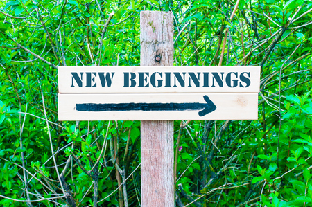NEW BEGINNINGS written on Directional wooden sign with arrow pointing to the right against green leaves background. Concept image with available copy space