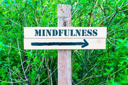 mindfulness: MINDFULNESS geschreven op Directional houten bord met pijl naar rechts tegen groene bladeren achtergrond. Concept beeld met beschikbare kopie ruimte Stockfoto