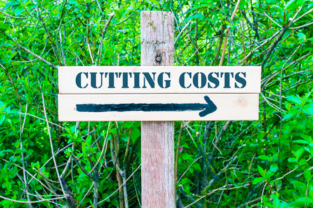 cutting costs: CUTTING COSTS  written on Directional wooden sign with arrow pointing to the right against green leaves background. Concept image with available copy space Stock Photo