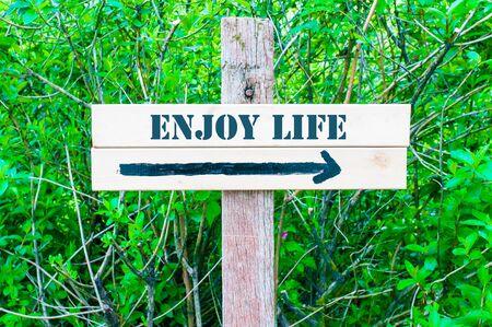 enjoy life: Goditi la vita scritta su direzionale cartello in legno con freccia che punta verso destra contro foglie verdi sfondo. Concetto di immagine con spazio disponibile copia
