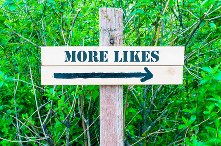likes: MORE LIKES written on Directional wooden sign with arrow pointing to the right against green leaves background. Concept image with available copy space