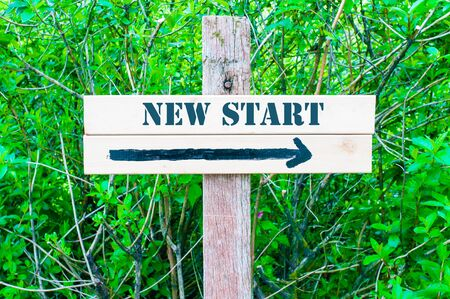 new start: NEW START written on Directional wooden sign with arrow pointing to the right against green leaves background. Concept image with available copy space Stock Photo