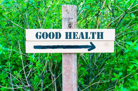 good health: GOEDE GEZONDHEID geschreven op Directional houten bord met pijl naar rechts tegen groene bladeren achtergrond. Concept beeld met beschikbare kopie ruimte Stockfoto