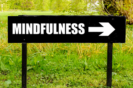 MINDFULNESS written on directional black metal sign with arrow pointing to the right against natural green background