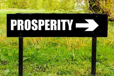 path to wealth: PROSPERITY written on directional black metal sign with arrow pointing to the right against natural green background