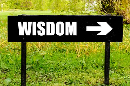 right path: WISDOM written on directional black metal sign with arrow pointing to the right against natural green  background