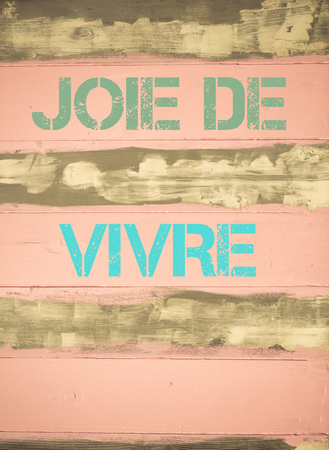 joie: Concept image of JOIE DE VIVRE motivational quote written on vintage painted wooden wall Stock Photo
