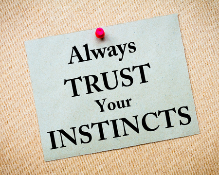 instincts: Always Trust Your Instincts Message written on recycled paper note pinned on cork board