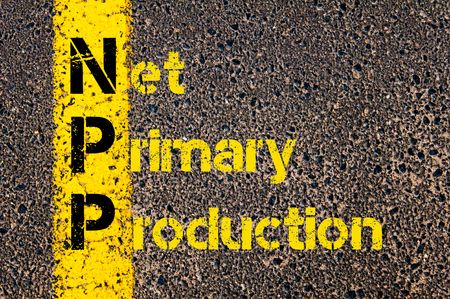 npp: Concept image of Business Acronym NPP as Net Primary Production written over road marking yellow paint line. Stock Photo