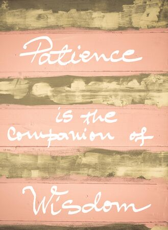 patience: Concept image of Patience is the companion of Wisdom motivational quote hand written on vintage painted wooden wall Stock Photo