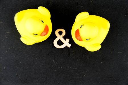 scribe: Pair of yellow rubber ducks isolated over black chalkboard background, love concept