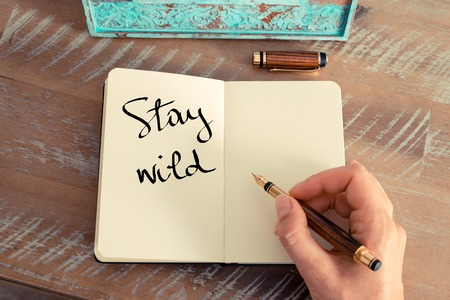 stay home work: Retro effect and toned image of a woman hand writing a note with a fountain pen on a notebook. Motivational concept with handwritten text STAY WILD