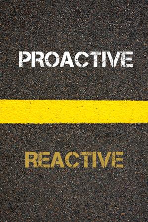 proactive: Antonym decision concept of REACTIVE versus PROACTIVE written over tarmac, road marking yellow paint separating line between words