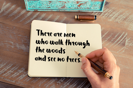 follow through: Retro effect and toned image of a woman hand writing on a notebook. Handwritten quote There are men who walk through the woods and see no trees as inspirational concept image