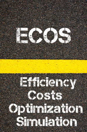 simulation: Concept image of Business Acronym ECOS Efficiency Costs Optimization Simulation written over road marking yellow paint line Stock Photo