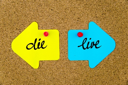 yellow thumbtacks: Message DIE versus LIVE on yellow and blue paper notes as opposite arrows pinned on cork board with thumbtacks. Choice conceptual image