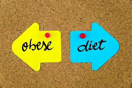 yellow thumbtacks: Message OBESE versus DIET on yellow and blue paper notes as opposite arrows pinned on cork board with thumbtacks. Choice conceptual image Stock Photo