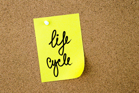 yellow thumbtacks: Life Cycle written on yellow paper note pinned on cork board with white thumbtacks, copy space available Stock Photo