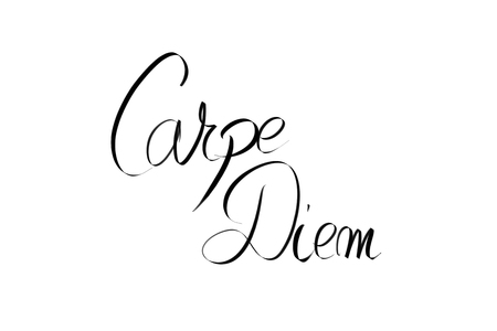 carpe diem: Carpe Diem motivational quote. Authentic hand writing isolated over white background as graphic resource.