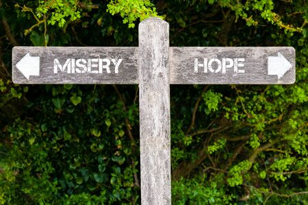 misery: Wooden signpost with two opposite arrows over green leaves background. MISERY versus HOPE directional signs, Choice concept image