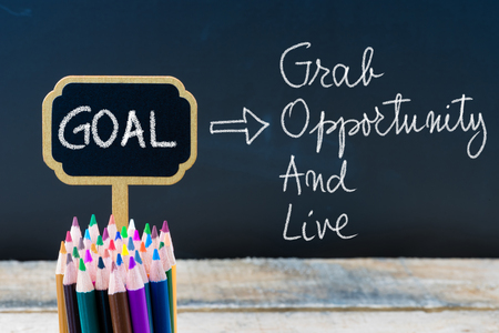 grab: Business Acronym GOAL Grab Opportunity and Live written with chalk on wooden mini blackboard labels and chalkboard background. Stock Photo