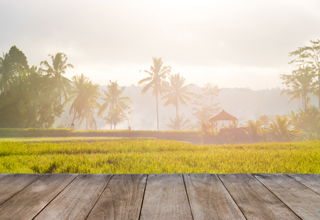 Perspective empty wooden table in front of rice fields and coconut trees. Template for product presentation display. Empty space for product placement. Tourism industry concept Stock Photo
