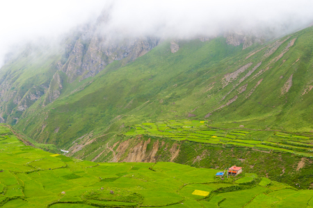 Green terraced fields and traditional architecture in the ancient Tibetan Nar village, Annapurna Conservation Area, Nepal