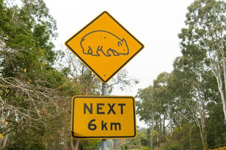 View over the traffic road and wombat yellow road sign in Australia 写真素材