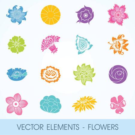 blue petals: elements - flowers, plants, leaves