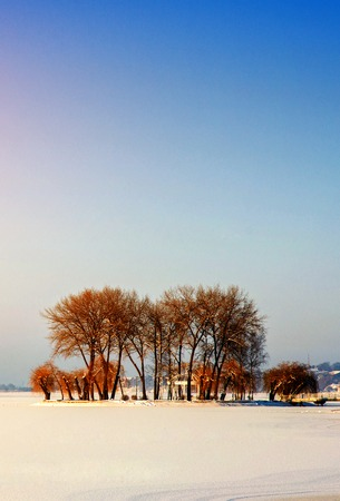 island with trees in the midst of a frozen lake Stock Photo