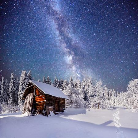yule log: fantastic winter landscape