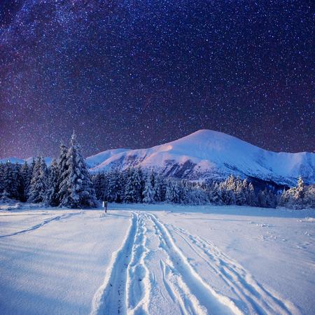 starry sky in winter snowy night Stock Photo