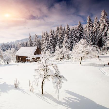 beautiful wooden house Stock Photo