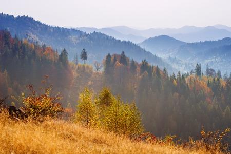風光明媚な秋の風景