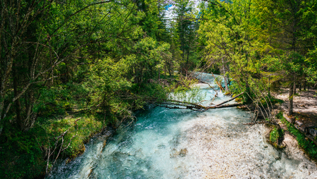 brooks camp: fast river in the forest Stock Photo