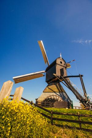 dutch: Dutch windmills Rotterdam. Holland.