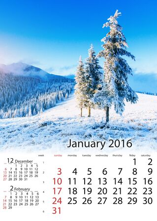 Calendar January 2016 - winter landscape trees in frost Stock Photo