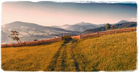 abloom: grass field in the mountains - Vintage effect.