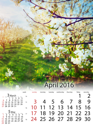 Kalendarz kwiecień 2016 - kwiaty jabłoni Na początku spr