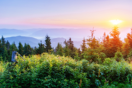 Fantastic sunset in the mountains of Ukraine.