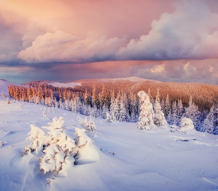 Fantastic winter landscape. Magic sunset in the mountains a frosty day. On the eve of the holiday. The dramatic scene. Carpathian, Ukraine, Europe. Happy New Year