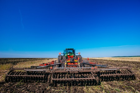 yielding: Working Harvesting Combine in the Field of Wheat
