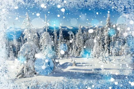 magical winter snow covered tree, background with some soft high Stock Photo