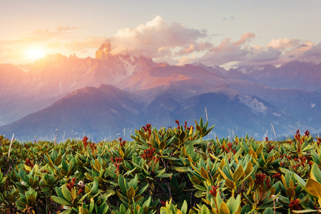 Sunset over snow-capped mountain peaks. The view from the mountain