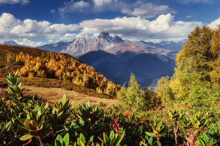 Magic autumn landscape and snow-capped mountain peaks