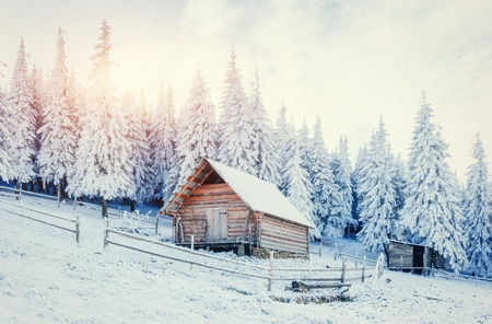wintersport: Cabin in the mountains in winter. Carpathian, Ukraine, Europe
