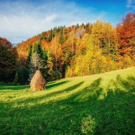 haycock: Autumn landscape in the mountains with colorful forest haycock Stock Photo