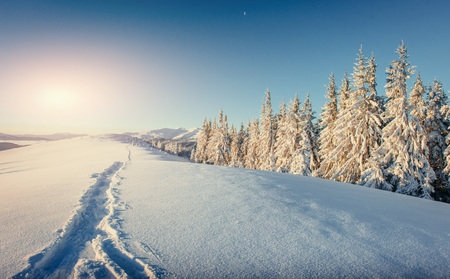 Fantastic winter landscape and trampled paths at sunset