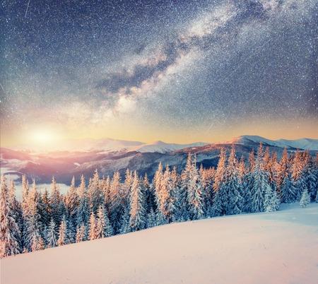 겨울 눈 덮인 밤에 별이 빛나는 하늘. Carpathians, 우크라이나, 유럽 스톡 콘텐츠